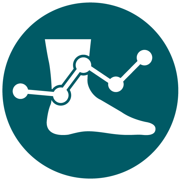 essential gait analysis software for in-shoe pressure mapping