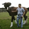 Hoof sensor featured in USA Today article on laminitis