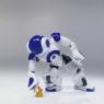 Aldebaran Robot
