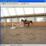 Equine gait analysis with the Hoof System