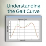 Understanding the Gait Curve Webinar