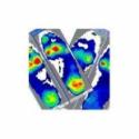 Quantitative Data Analysis Training Webinar